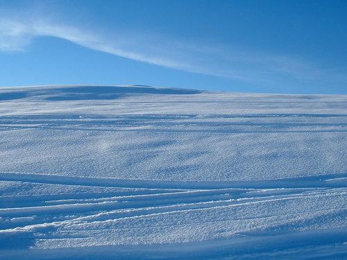 Upptäck naturen på längdskidor i vinter